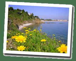kuste am meer Argelès-sur-Mer