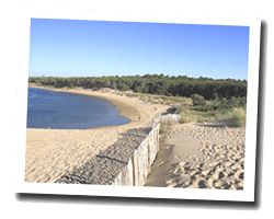 seaside holiday rentals Vendée coast