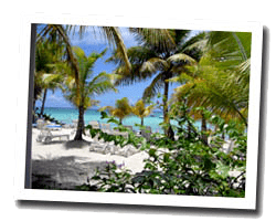locations vue mer guadeloupe