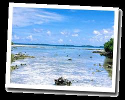 Hôtel vue mer manihi