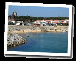 seaside holiday rentals Mimizan-Plage