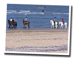 seaside holiday rentals Normandy