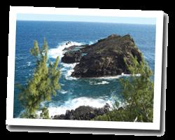 locations vue mer petite_ile