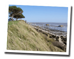 locations vue mer port_des_barques