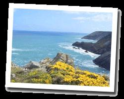 locations vue mer presqu_ile_de_crozon