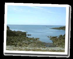 locations vue mer primelin