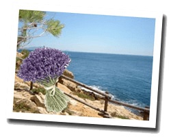 seaside holiday rentals Provence