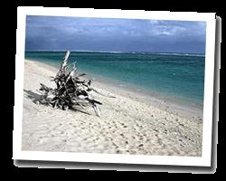 seaside holiday rentals Reunion Island