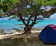 camping bord de mer  Parea