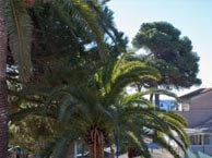 hotel with sea view ceinturon-hyeres