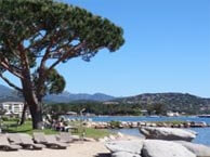 goeland-porto-vecchio chez booking.com