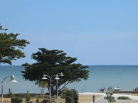 hotel with sea view l-ocean-saint-vincent-sur-jard