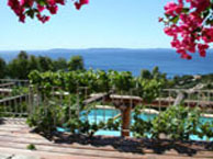 hotel with sea view les-iles-d-or-le-lavandou