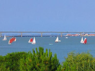 hotel with sea view mer-et-foret-oleron