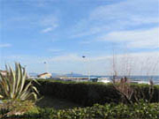 Apartment with sea view Sausset-les-Pins