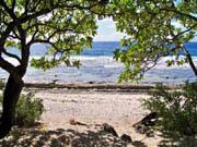 Ferienhaus am meer Moorea