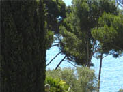 House with sea view Bandol