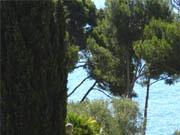 location Maison vue mer Bandol