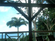 Ferienhaus am meer Deshaies