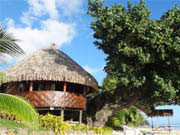 Apartment booking Moorea