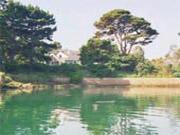 Maison abritel Ile de Bréhat