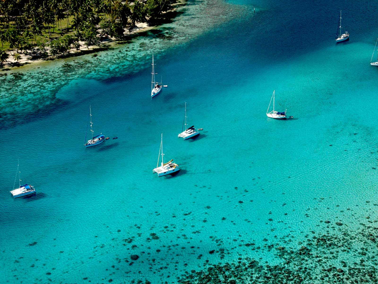 Fond ecran mer gratuit pacifique ocean indien for Images gratuites fond ecran mer