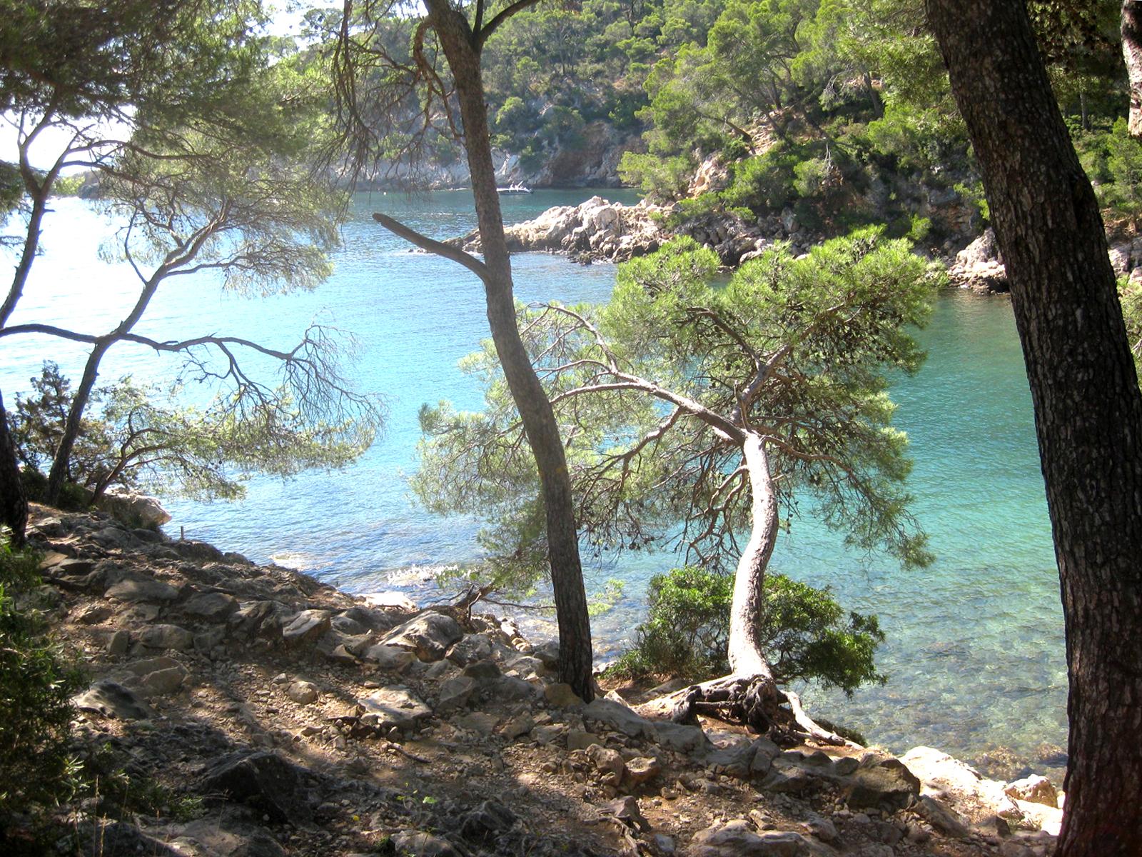 Fond ecran gratuit mediterranee - Office du tourisme saint cyr sur mer ...